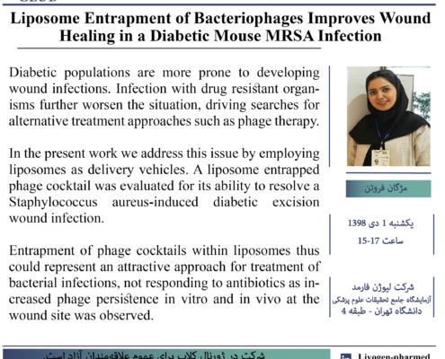 Liposome Entrapment of Bacteriophages Improves Wound Healing in a Diabetic Mouse MRSA Infection
