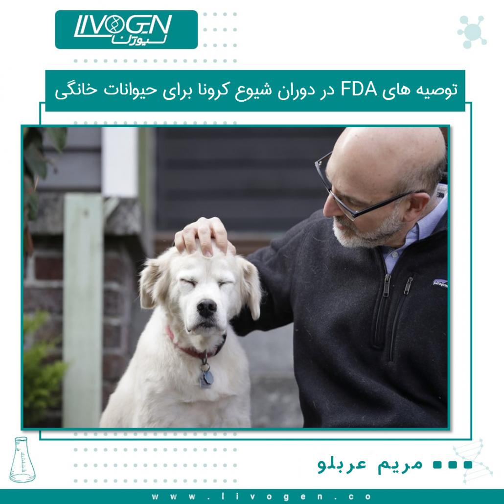 ☑️ توصیه های FDA در دوران شیوع کرونا برای حیوانات خانگی   سازمان غذا و دارو (FDA) توصیه هایی را برای صاحبان حیوانات اهلی در طی همه گیری های کروناویروس صادر کرده است و شیوه های فاصله گزاری اجتماعی را برای گربه ها و سگها ترغیب می کند. یک برگه حقوقی FDA از 30 آوریل نشان می دهد که حیوانات اهلی نباید با مردم یا حیوانات دیگر در خارج از خانواده نزدیک ارتباط برقرار کنند. در صورت امکان گربه ها باید در داخل خانه نگه داشته شوند و سگ ها را باید در قلاده نگه داشت که بتواند حداقل یک مترو نیم از سایر انسان ها و حیوانات فاصله داشته باشد.