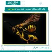 تولید آنتی بیوتیک مهندسی شده جدید از زهر زنبور - سعید کارگر