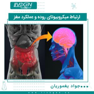ارتباط میکروبیوتای روده و عملکرد مغز