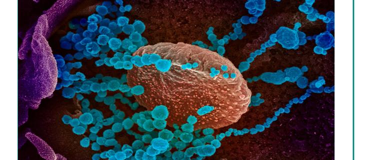 متخصصانNIH انواع ویروسیSARS-CoV-2 را مورد بحث قرار می دهند